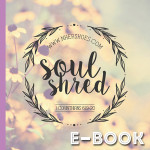 Soul Shred (E-Book)
